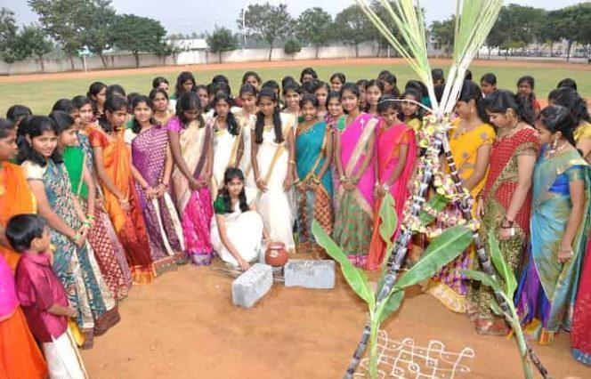 pongal-festival-celebration