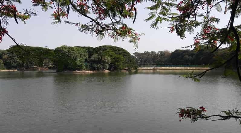 Lake at Lalbagh Botanical Garden